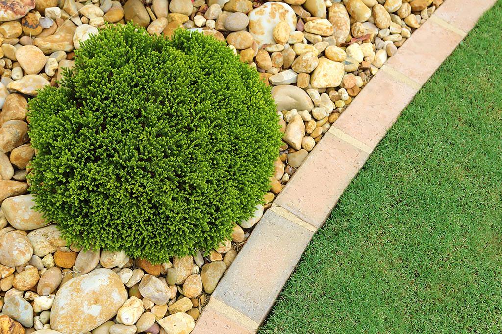 Arredo giardino vicino a montecchio arzignano creazzo for Arredo giardino vicenza